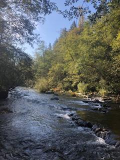 Alouette River